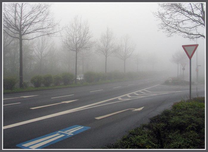 как ехать в тумане